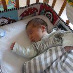 תזונה אחרי לידה- תזונה בהנקה